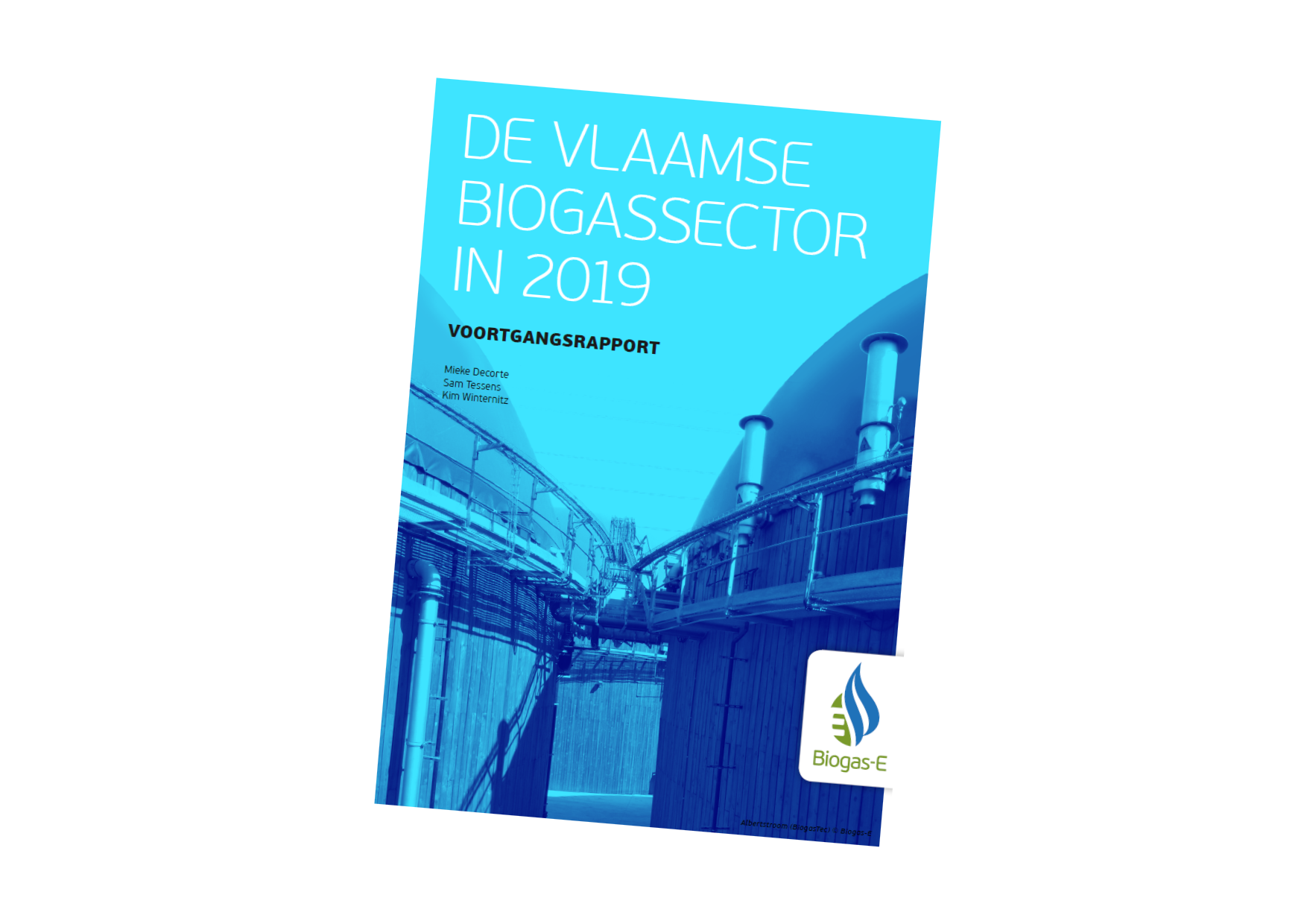 Vlaamse biogassector 2019